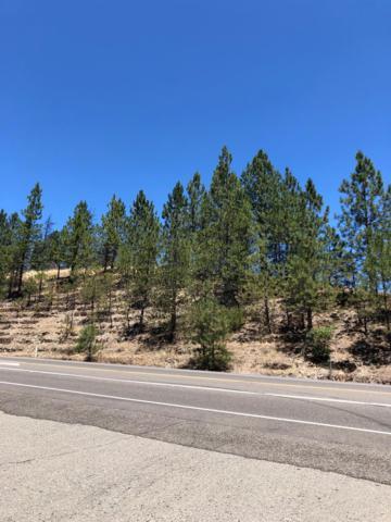 20 Highway 193, Greenwood, CA 95635 (MLS #19049789) :: The MacDonald Group at PMZ Real Estate