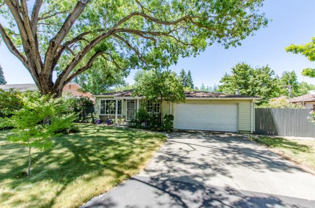 8205 Catalpa Drive, Citrus Heights, CA 95610 (MLS #19049804) :: REMAX Executive