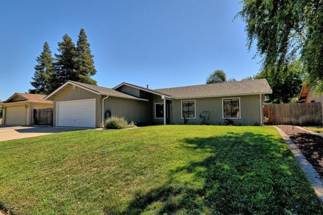 9851 Country Meadow Drive, Stockton, CA 95209 (MLS #19049811) :: Heidi Phong Real Estate Team