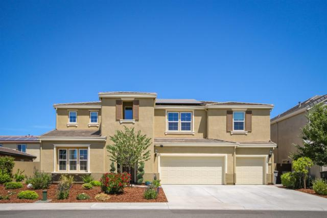 1637 Monroe Way, Rocklin, CA 95765 (MLS #19049867) :: REMAX Executive