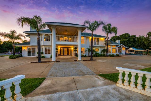 4200 Oak Valley Drive, Auburn, CA 95602 (MLS #19050126) :: Heidi Phong Real Estate Team
