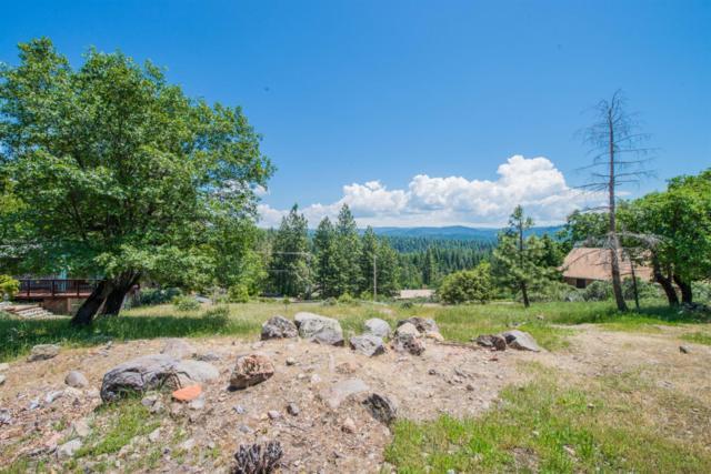 6915 Diamond Ct, Pollock Pines, CA 95726 (MLS #19050160) :: Heidi Phong Real Estate Team