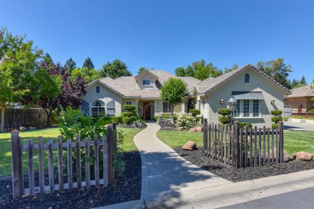9031 Hidden Glen Lane, Orangevale, CA 95662 (MLS #19050204) :: Heidi Phong Real Estate Team