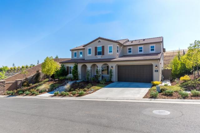 3588 Terra Alta Drive, El Dorado Hills, CA 95762 (MLS #19050255) :: Keller Williams - Rachel Adams Group