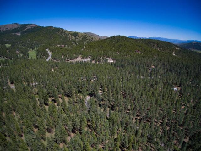 5020 Grizzly Road, Portola, CA 96122 (MLS #19050261) :: Heidi Phong Real Estate Team