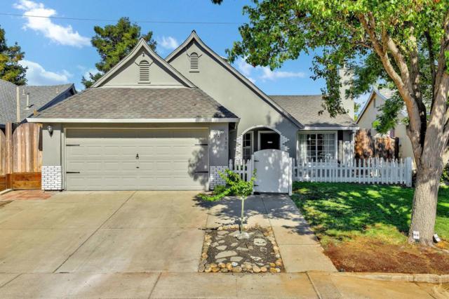 1520 Citrus Drive, Modesto, CA 95350 (MLS #19050322) :: Heidi Phong Real Estate Team
