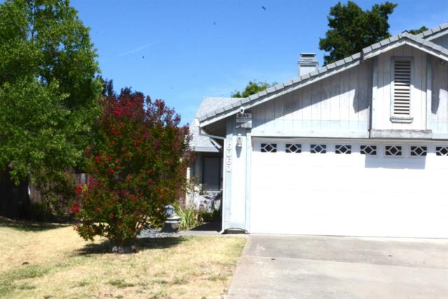 6060 Peoria Drive, Citrus Heights, CA 95621 (MLS #19050326) :: Keller Williams - Rachel Adams Group