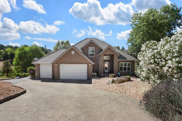 587 Brookline Court, Valley Springs, CA 95252 (MLS #19050329) :: Heidi Phong Real Estate Team