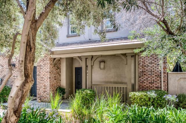 161 W Luna Loca Lane, Mountain House, CA 95391 (MLS #19050342) :: Heidi Phong Real Estate Team