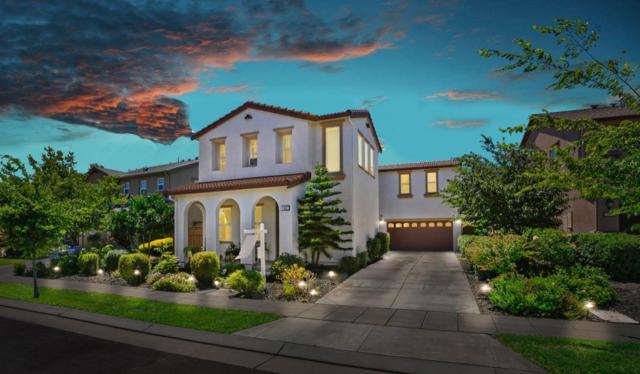 162 W Las Tablas Way, Mountain House, CA 95391 (MLS #19050355) :: Heidi Phong Real Estate Team