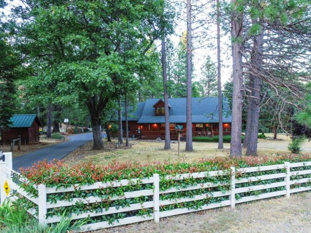 3423 Lynx Trail Court, Pollock Pines, CA 95726 (MLS #19050389) :: Dominic Brandon and Team