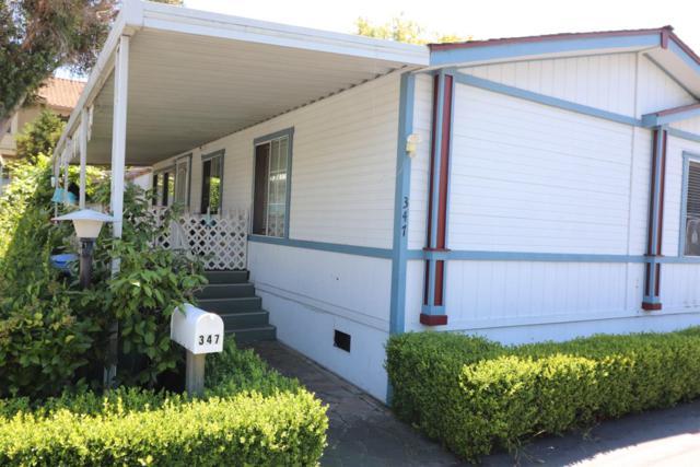3637 Snell Avenue #347, San Jose, CA 95136 (MLS #19050521) :: Keller Williams - Rachel Adams Group