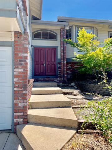 2648 Shadow Lane, Valley Springs, CA 95252 (MLS #19050652) :: Heidi Phong Real Estate Team