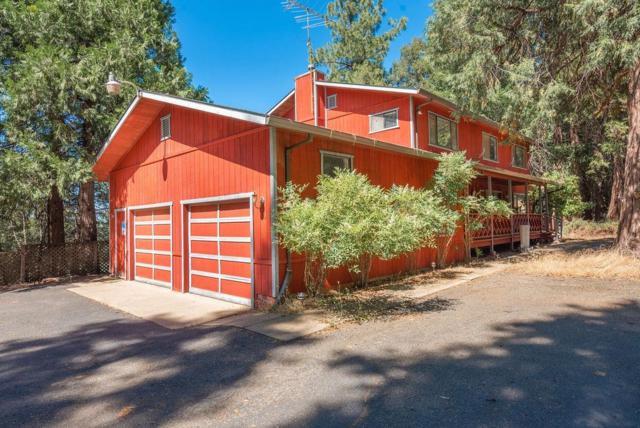 24835 Shake Ridge Road, Volcano, CA 95689 (MLS #19050679) :: Heidi Phong Real Estate Team