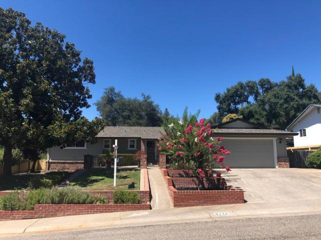 8735 El Chapul Way, Fair Oaks, CA 95628 (MLS #19050802) :: The Merlino Home Team
