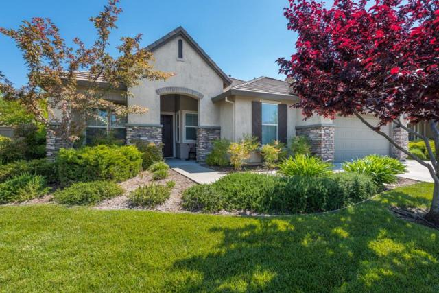 8025 Damico Drive, El Dorado Hills, CA 95762 (MLS #19050804) :: Keller Williams - Rachel Adams Group