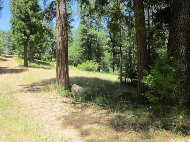 3 Hermosa Vista Way, Somerset, CA 95684 (MLS #19050851) :: Keller Williams - Rachel Adams Group