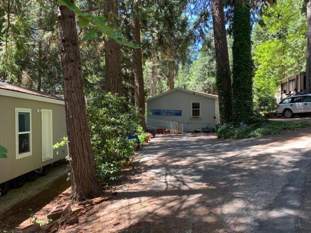 5840 Pony Express Trail #9, Pollock Pines, CA 95726 (MLS #19050937) :: Keller Williams - Rachel Adams Group