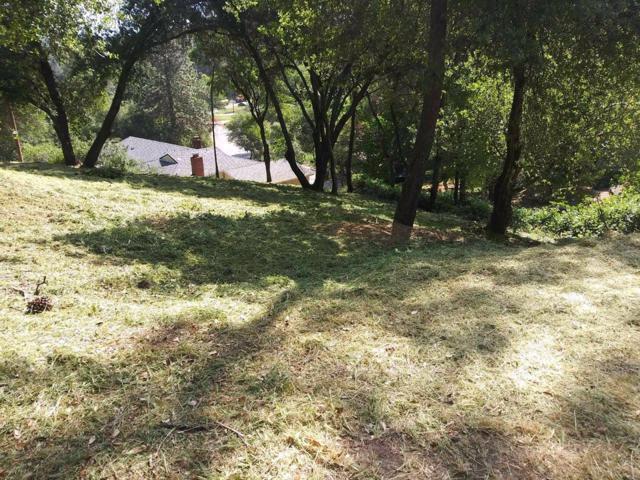 531 Torero Way, El Dorado Hills, CA 95762 (MLS #19051030) :: Dominic Brandon and Team