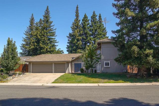 5137 Long Canyon Drive, Fair Oaks, CA 95628 (MLS #19051050) :: The Merlino Home Team