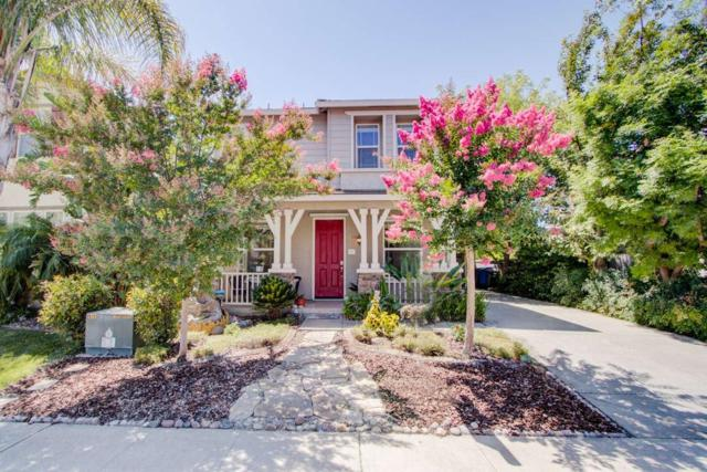 3517 Delta Queen Avenue, Sacramento, CA 95833 (MLS #19051078) :: Heidi Phong Real Estate Team