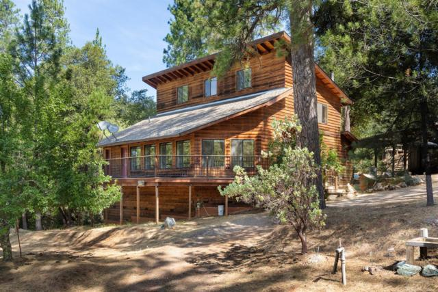 19749 E Clinton Road, Jackson, CA 95642 (MLS #19051112) :: Dominic Brandon and Team