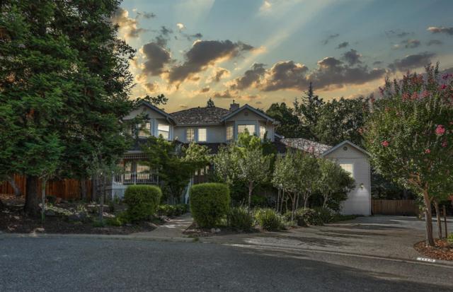 1113 Arbor Place, El Dorado Hills, CA 95762 (MLS #19051115) :: The MacDonald Group at PMZ Real Estate