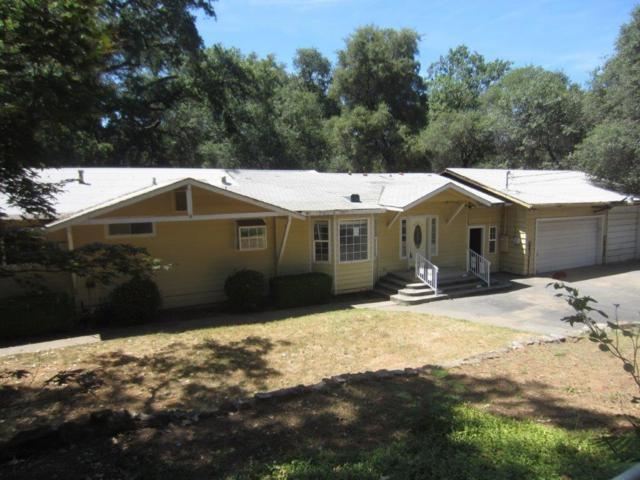 18694 Siesta Drive, Penn Valley, CA 95946 (MLS #19051150) :: Heidi Phong Real Estate Team