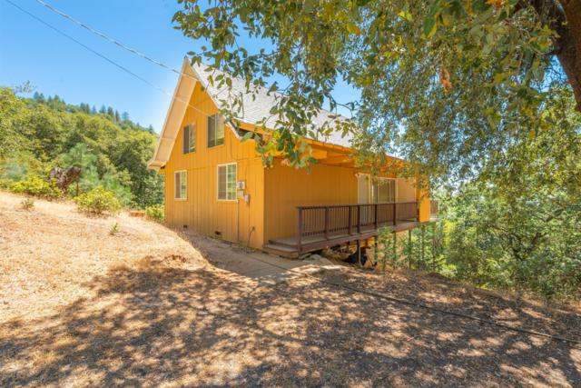 12804 Bonnefoy Road, Pine Grove, CA 95665 (MLS #19051197) :: Dominic Brandon and Team