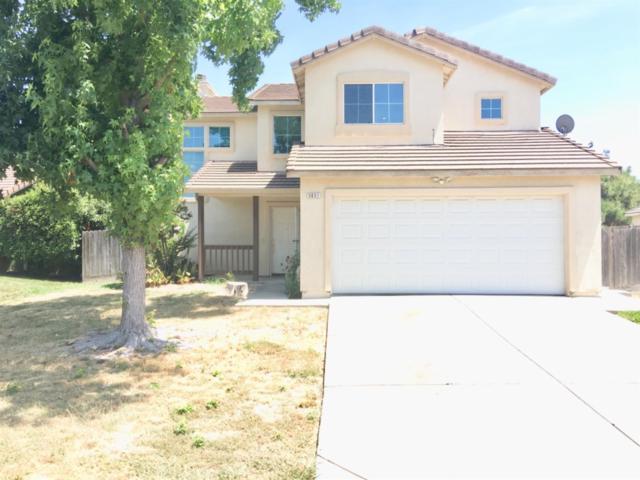 5651 Rexleigh Drive, Sacramento, CA 95823 (MLS #19051211) :: Heidi Phong Real Estate Team