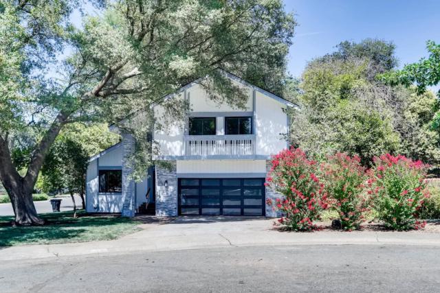 8736 Great Oak Way, Fair Oaks, CA 95628 (MLS #19051278) :: The Merlino Home Team