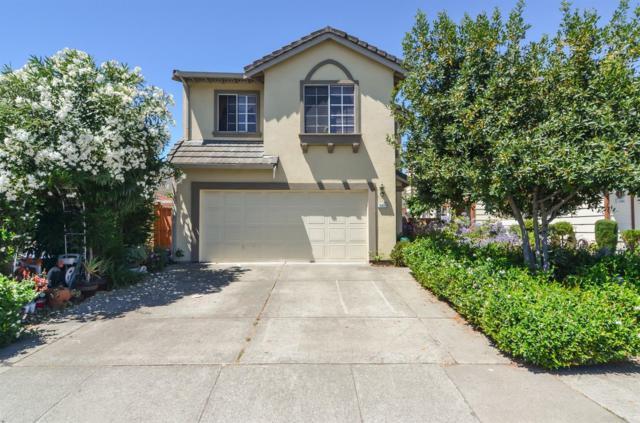 15893 Nielson Ave, San Lorenzo, CA 94580 (MLS #19051311) :: Dominic Brandon and Team