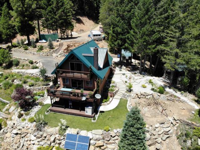 200 Craycroft Ridge Road, Downieville, CA 95936 (MLS #19051402) :: Heidi Phong Real Estate Team