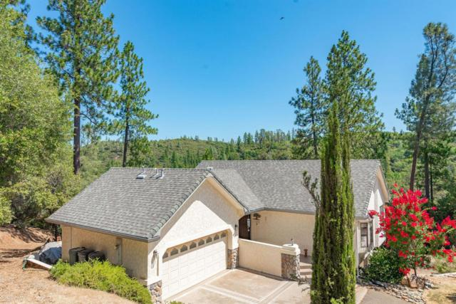 16430 Meadow Road, Sutter Creek, CA 95685 (MLS #19051429) :: Dominic Brandon and Team