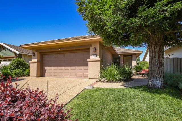 485 Snapdragon Lane, Lincoln, CA 95648 (MLS #19051431) :: Dominic Brandon and Team