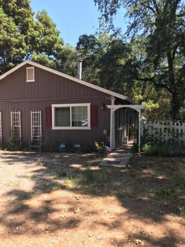 14004 Rolling Hills Court, Pine Grove, CA 95665 (MLS #19051454) :: Dominic Brandon and Team