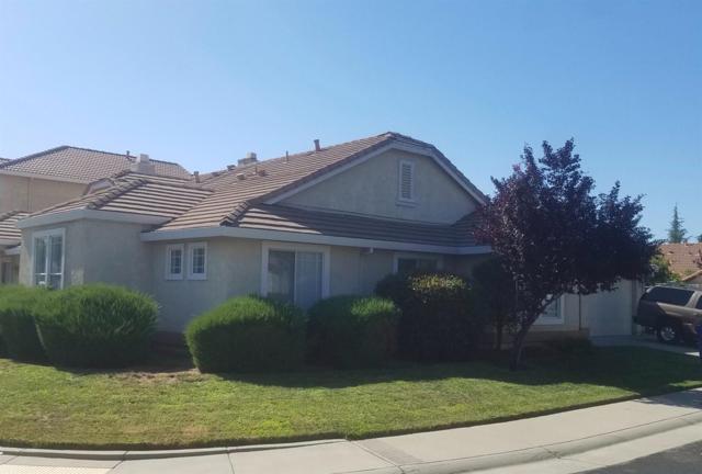 9117 Eaglewind Drive, Roseville, CA 95747 (MLS #19051487) :: Heidi Phong Real Estate Team