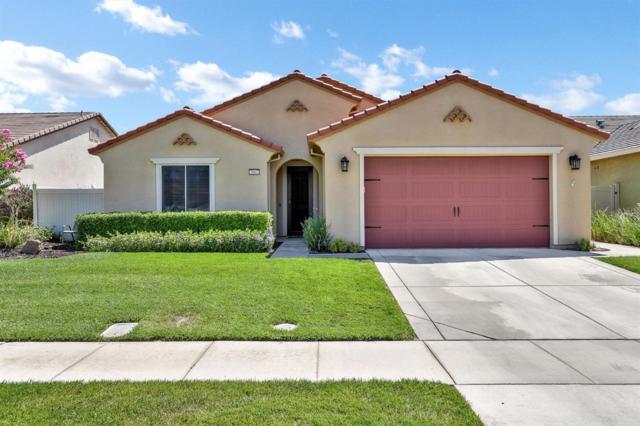 2662 Roseberry Avenue, Manteca, CA 95336 (MLS #19051506) :: Heidi Phong Real Estate Team