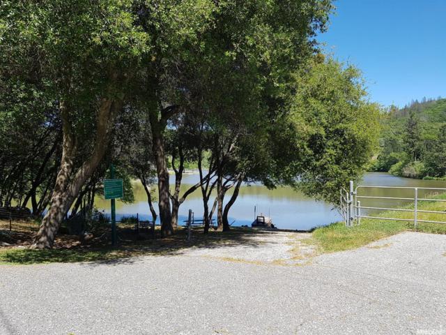15939 Dry Creek Lane, Grass Valley, CA 95949 (MLS #19051559) :: Dominic Brandon and Team