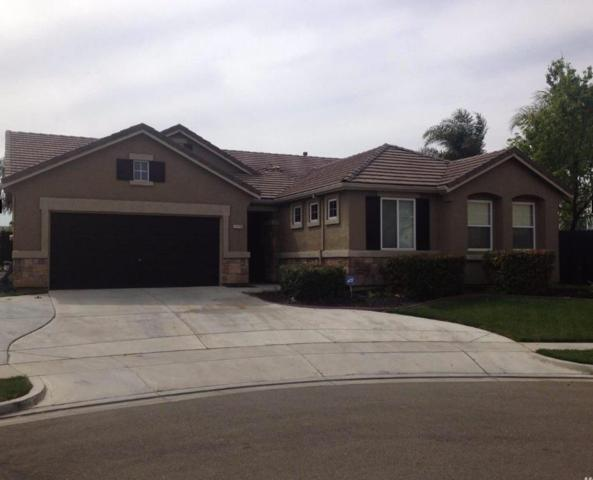 1478 Samantha Creek Drive, Patterson, CA 95363 (MLS #19051571) :: Dominic Brandon and Team