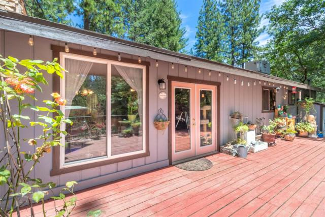 6370 Wildflower Court, Placerville, CA 95667 (MLS #19051651) :: The MacDonald Group at PMZ Real Estate