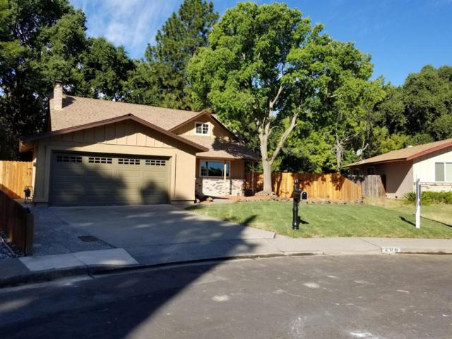 206 Amherst Court, Vacaville, CA 95687 (MLS #19051693) :: Heidi Phong Real Estate Team