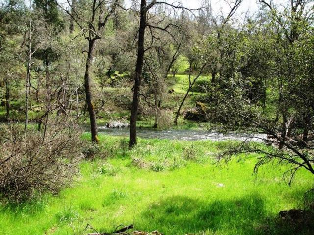 11356 0H WAE REE Place, Grass Valley, CA 95949 (MLS #19051717) :: REMAX Executive