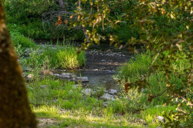 10315-10317 Pleasant Valley Road, Penn Valley, CA 95946 (MLS #19051815) :: Heidi Phong Real Estate Team