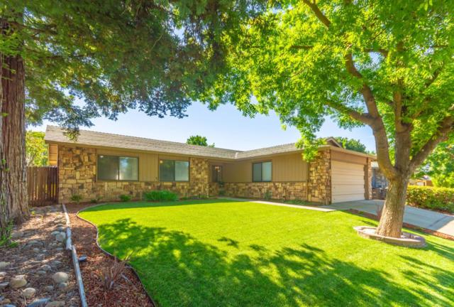 8338 Willow Tree Way, Citrus Heights, CA 95621 (MLS #19051828) :: The Del Real Group
