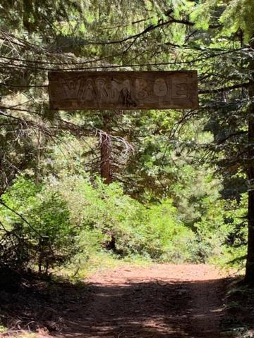 0-1 Mormon Immigrant Trail, Grizzly Flats, CA 95636 (MLS #19051979) :: The Merlino Home Team