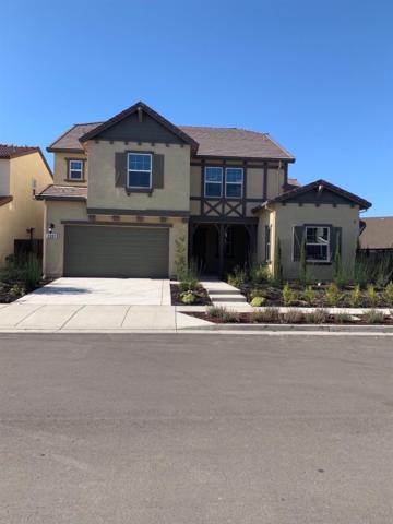 2331 Rio Grande Drive, Tracy, CA 95377 (MLS #19052267) :: Heidi Phong Real Estate Team