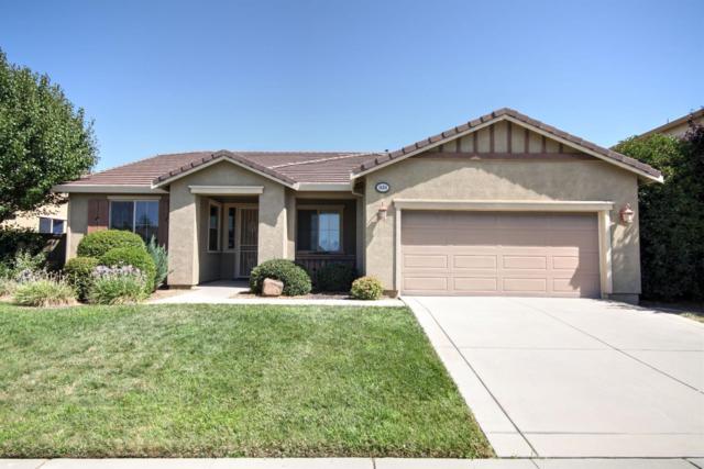1454 Tarrant Drive, Olivehurst, CA 95961 (MLS #19052568) :: Heidi Phong Real Estate Team