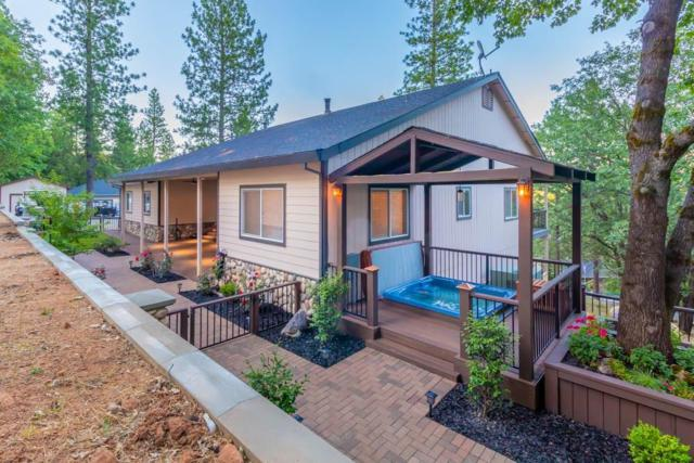 20647 Birchwood Drive, Foresthill, CA 95631 (MLS #19052700) :: Heidi Phong Real Estate Team