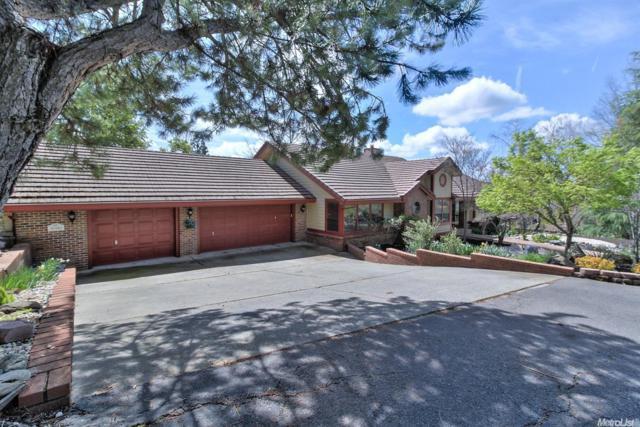 8980 Upper Valley Road, Auburn, CA 95602 (MLS #19052995) :: Heidi Phong Real Estate Team